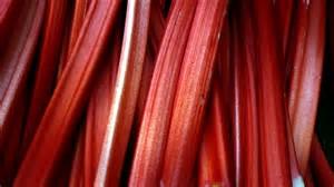 rhubarb.png